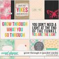 Grow Through It Pocket Cards by Ponytails