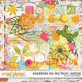 Sunshine on my Face: Extras by River Rose Designs