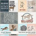 Hay Fever Pocket Cards by Ponytails