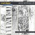Grainy Goodness v.22 by Erica Zane