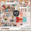 Dear Me Bundle by Studio Basic and Tracie Stroud