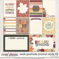 Seek Gratitude Journal Cards #2 by Traci Reed