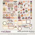 Seek Gratitude Stickers by Traci Reed