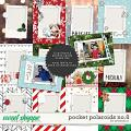 Pocket polaroids no. 8 by Amanda Yi