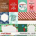 Christmas Fun Cards by Meagan's Creations and Digital Scrapbook Ingredients