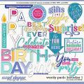 Cindy's Wordy Pack: Birthday 1 by Cindy Schneider