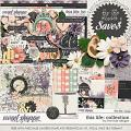 This Life: Collection + FWP by River Rose Designs