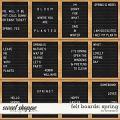 Felt Boards: Spring by Amanda Yi