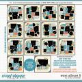 Cindy's Layered Templates - Mini Album 5 by Cindy Schneider