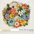 Sunny Side Up Extras by LJS Designs