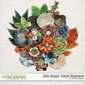 The Dogs Bark Flowers by JoCee Designs