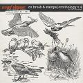 CU BRUSH & STAMPS | ORNOTHOLOGY V.4 by The Nifty Pixel