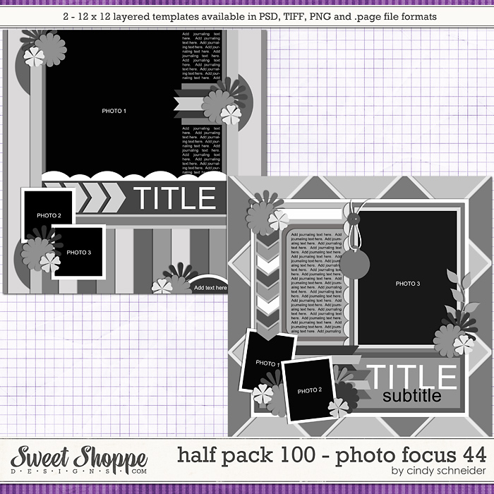 Cindy's Layered Templates - Half Pack 100: Photo Focus 44 by Cindy Schneider