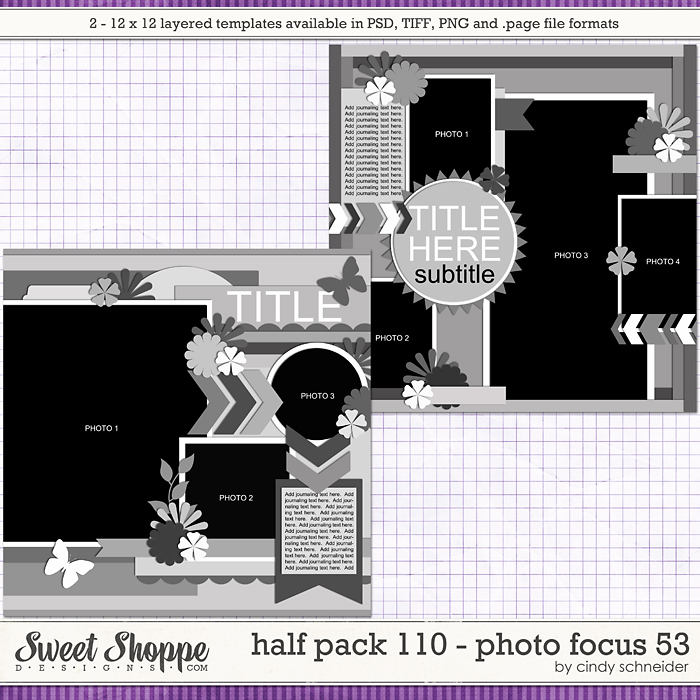 Cindy's Layered Templates - Half Pack 110: Photo Focus 53 by Cindy Schneider