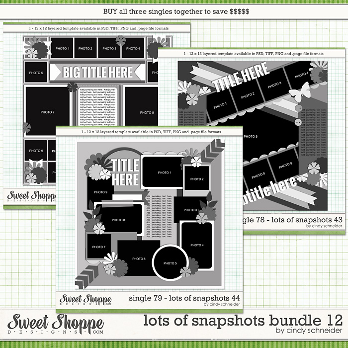 Cindy's Layered Templates - Lots of Snapshots Bundle 12 by Cindy Schneider