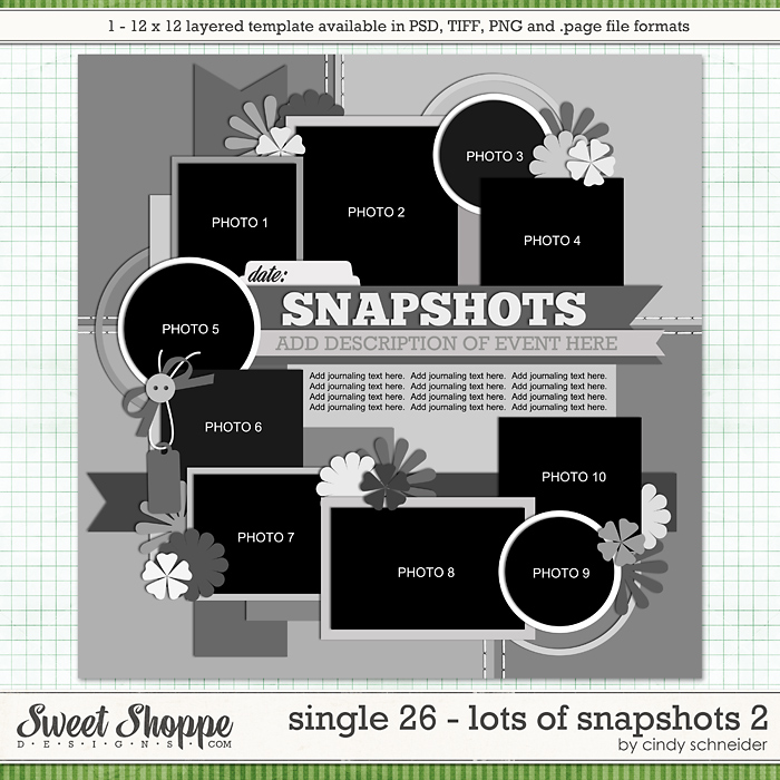 Cindy's Layered Templates - Single 26: Lots of Snapshots 2 by Cindy Schneider