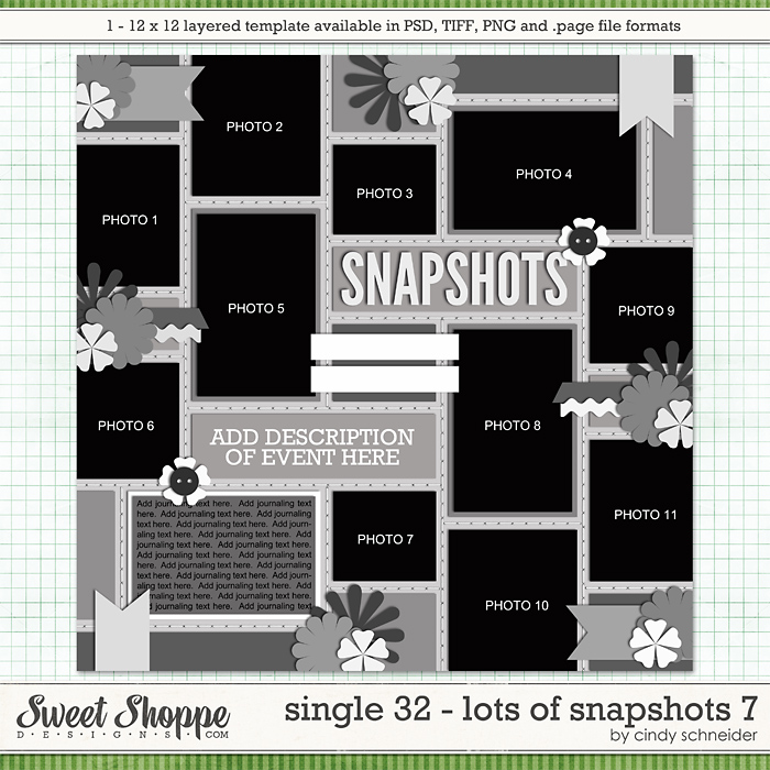 Cindy's Layered Templates - Single 32: Lots of Snapshots 7 by Cindy Schneider