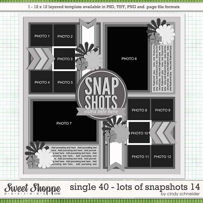 Cindy's Layered Templates - Single 40: Lots of Snapshots 14 by Cindy Schneider
