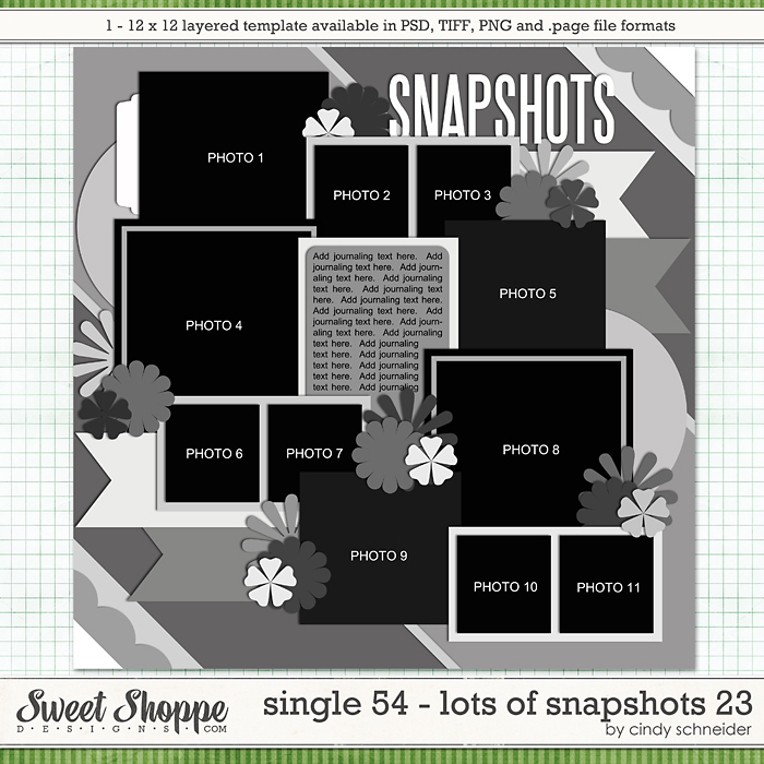 Cindy's Layered Templates - Single 54: Lots of Snapshots 23 by Cindy Schneider