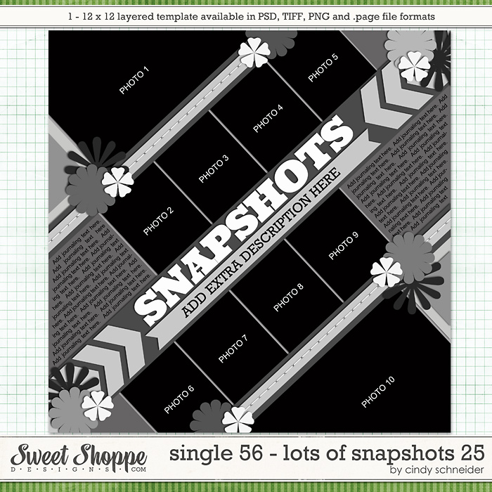 Cindy's Layered Templates - Single 56: Lots of Snapshots 25 by Cindy Schneider