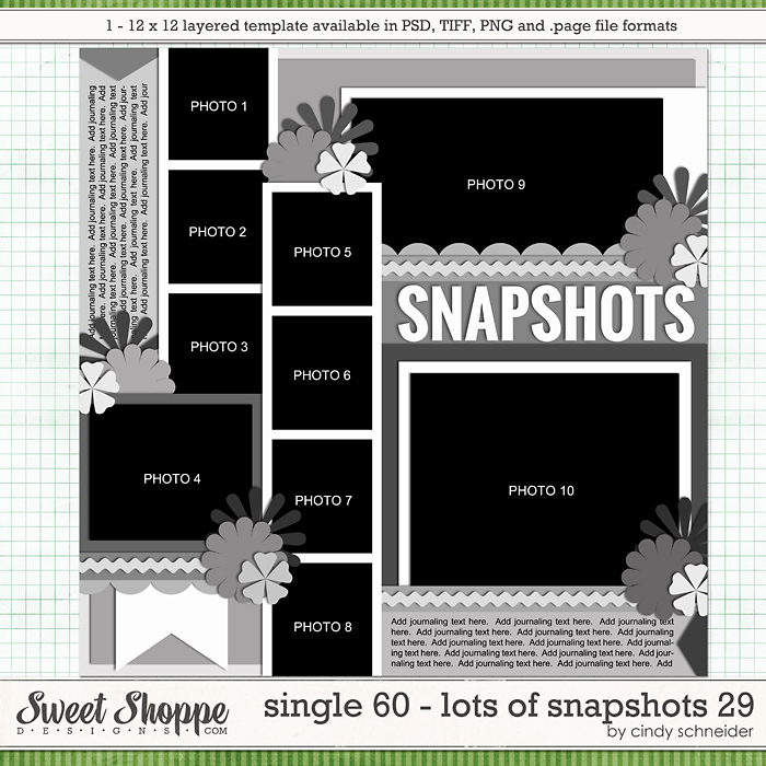 Cindy's Layered Templates - Single 60: Lots of Snapshots 29 by Cindy Schneider
