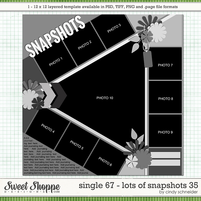 Cindy's Layered Templates - Single 67: Lots of Snapshots 35 by Cindy Schneider