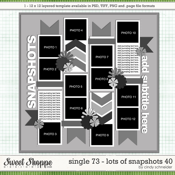 Cindy's Layered Templates - Single 73: Lots of Snapshots 40 by Cindy Schneider