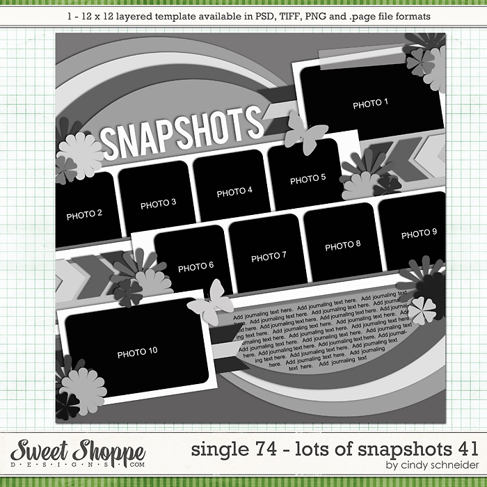 Cindy's Layered Templates - Single 74: Lots of Snapshots 41 by Cindy Schneider