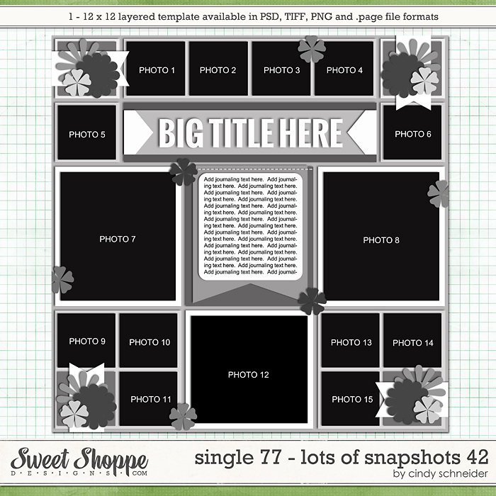 Cindy's Layered Templates - Single 77: Lots of Snapshots 42 by Cindy Schneider