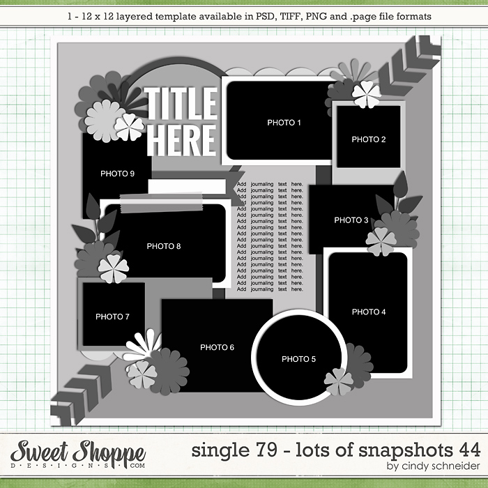 Cindy's Layered Templates - Single 79: Lots of Snapshots 44 by Cindy Schneider