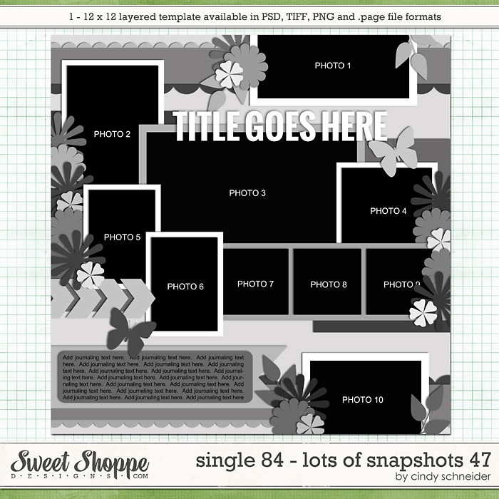 Cindy's Layered Templates - Single 84: Lots of Snapshots 47 by Cindy Schneider