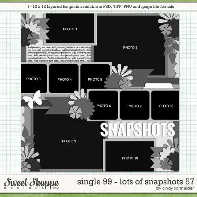 Cindy's Layered Templates - Single 99: Lots of Snapshots 57 by Cindy Schneider