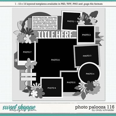 Cindy's Layered Templates - Photo Palooza 116 by Cindy Schneider