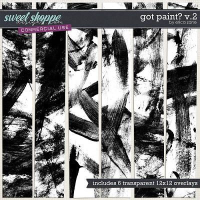 Got Paint? v.2 by Erica Zane