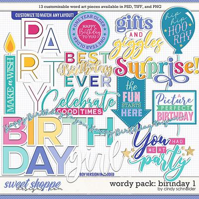 Cindy's Wordy Pack: Birthday 1 by Cindy Schneider