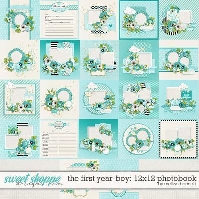 The First Year-Boy 12x12 Photobook by Melissa Bennett