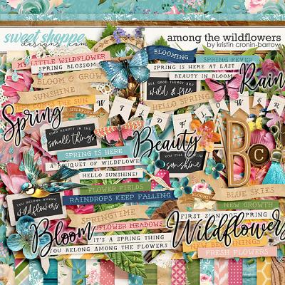 Among the Wildflowers by Kristin Cronin-Barrow