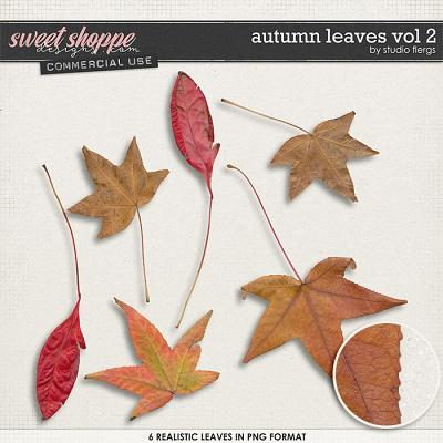 Auntumn Leaves VOL 2 by Studio Flergs