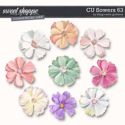 CU Flowers 63 by Blagovesta Gosheva