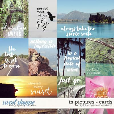 In Pictures | Cards by Digital Scrapbook Ingredients