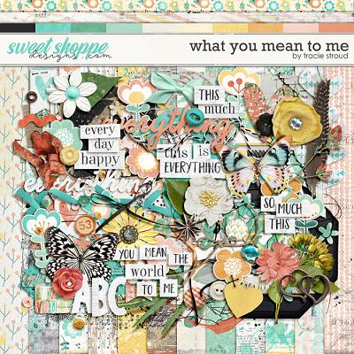 What You Mean to Me by Tracie Stroud