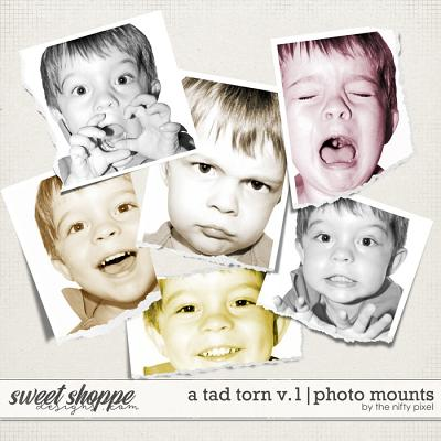 A TAD TORN V.1 | PHOTO CLIPPING MASKS by The Nifty Pixel