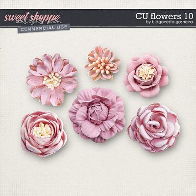 CU Flowers 10 by Blagovesta Gosheva