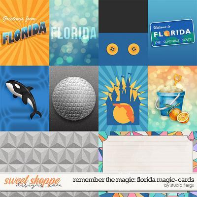 Remember the Magic: FLORIDA MAGIC- CARDS by Studio Flergs