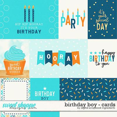 Birthday Boy | Cards by Digital Scrapbook Ingredients