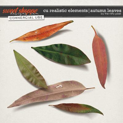 CU REALISTIC ELEMENTS | AUTUMN LEAVES by The Nifty Pixel