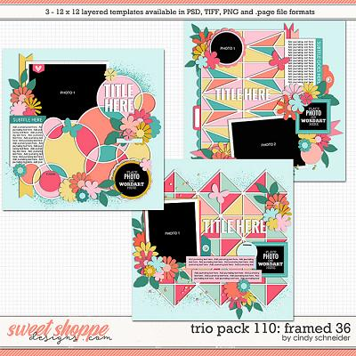 Cindy's Layered Templates - Trio Pack 110: Framed 36 by Cindy Schneider