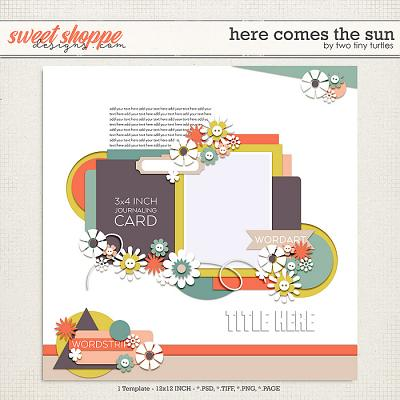 Here Comes The Sun by Two Tiny Turtles