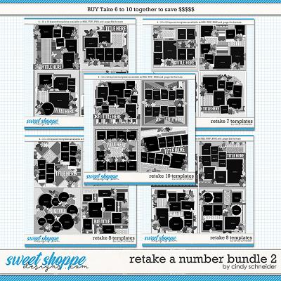 Retake All The Numbers Bundle 2 by Cindy Schneider