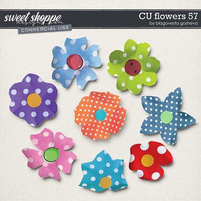 CU Flowers 57 by Blagovesta Gosheva